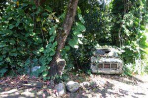 hawaii_maui_strasse_salzkammergutblog_retzek