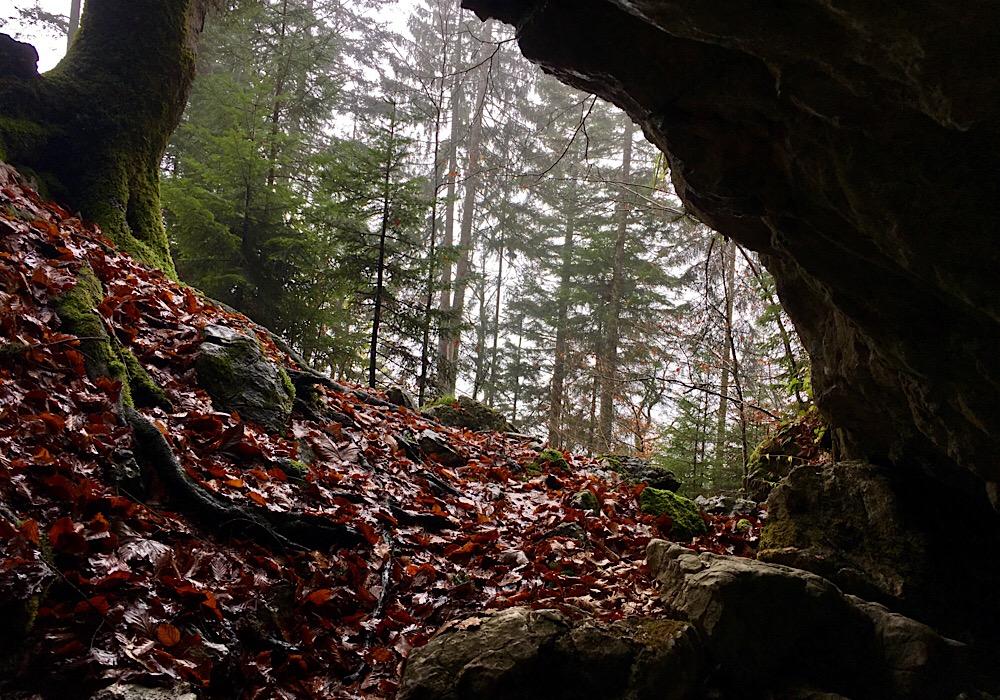 Ausblick aus der Höhle am Toleranzweg