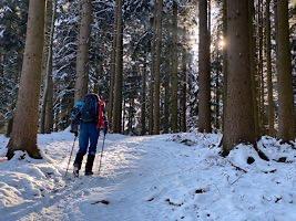 Durch den Wald auf die Kulmspitze